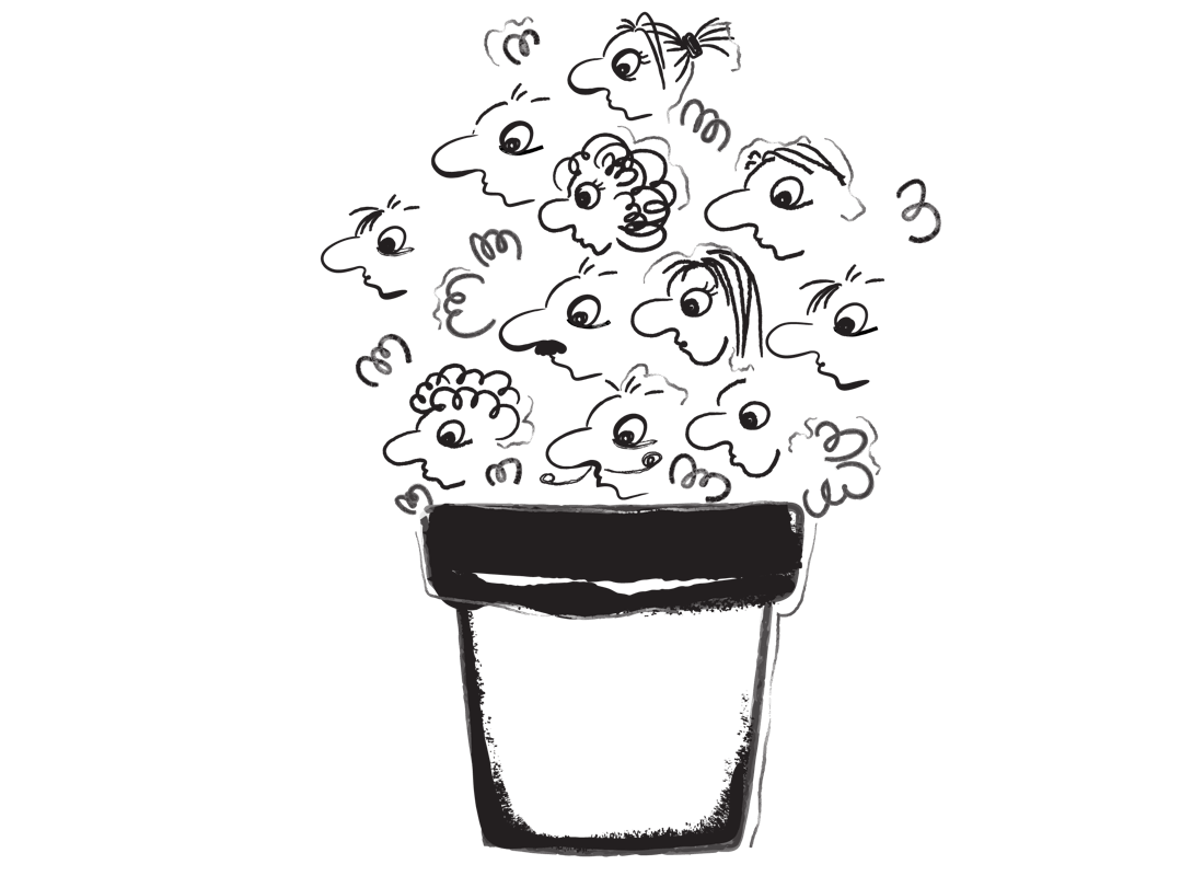An illustration of a flower pot with a rather peculiar plant growing. Instead of flowers, the plant is blooming with tiny human faces.